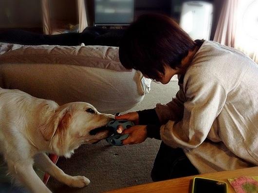LINEcamera_share_2015-01-10-20-46-36.jpg