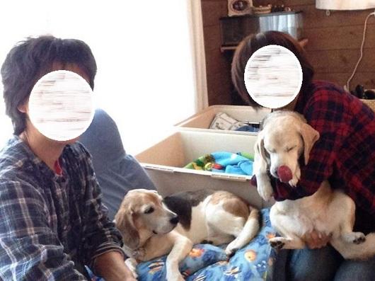 LINEcamera_share_2015-10-31-16-44-11.jpg